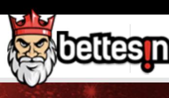 bettesin logo